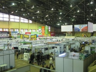 Technodrev_Far_East_Fpril_2013.JPG